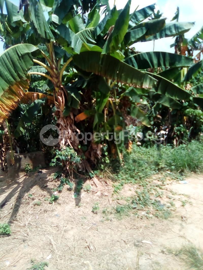 Residential Land for sale Church Street Igbo Olomu Junction Ikorodu Isawo Ikorodu Lagos - 4