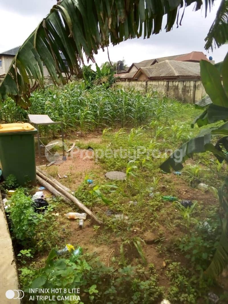 Mixed   Use Land Land for sale Peace Estate  Baruwa Ipaja Lagos - 0