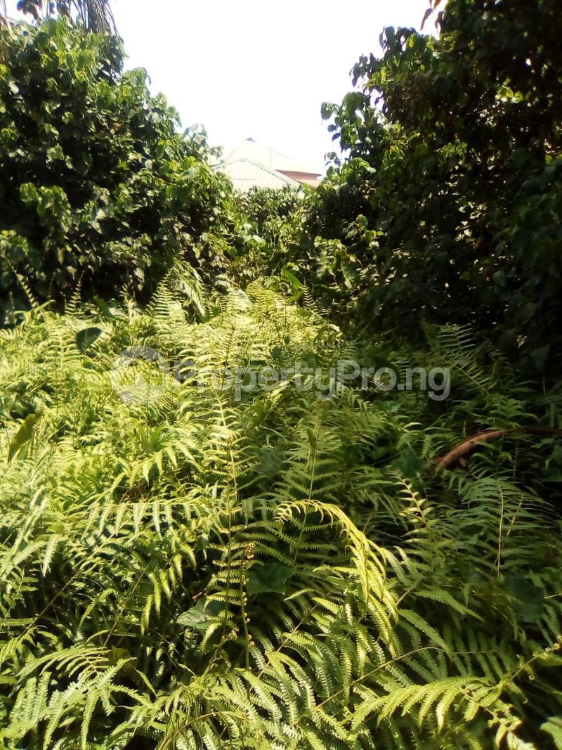 Residential Land for sale Church Street Igbo Olomu Junction Ikorodu Isawo Ikorodu Lagos - 6