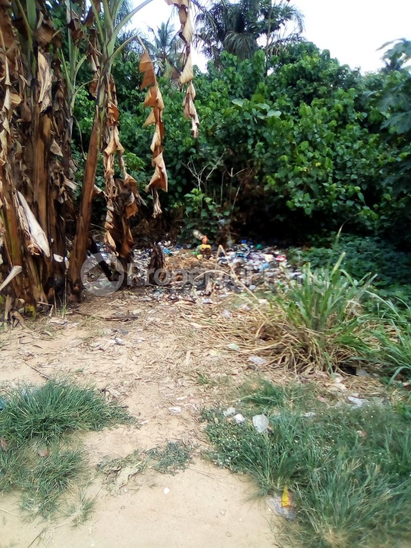 Residential Land for sale Church Street Igbo Olomu Junction Ikorodu Isawo Ikorodu Lagos - 5