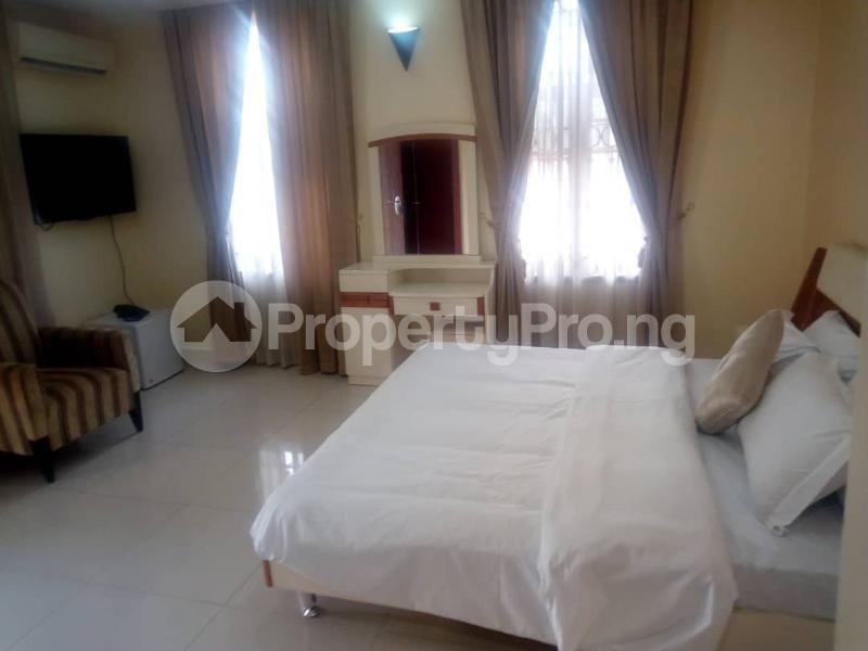 3 bedroom Flat / Apartment for shortlet Julius Nyere Street,  Asokoro Abuja - 18