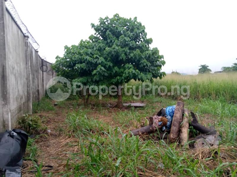 Commercial Property for shortlet Onitiri Agege Lagos - 1