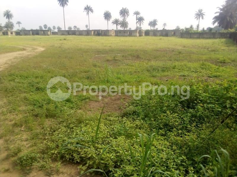 Land for sale Shelter Afrique, Uyo. Uyo Akwa Ibom - 0
