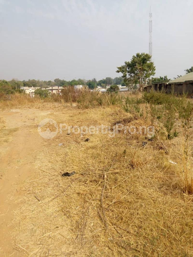 Residential Land for sale Asokoro Asokoro Abuja - 3