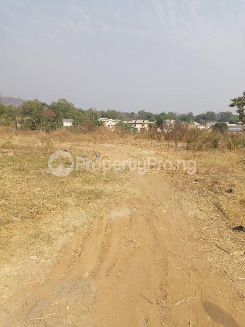 Residential Land for sale Asokoro Asokoro Abuja - 1
