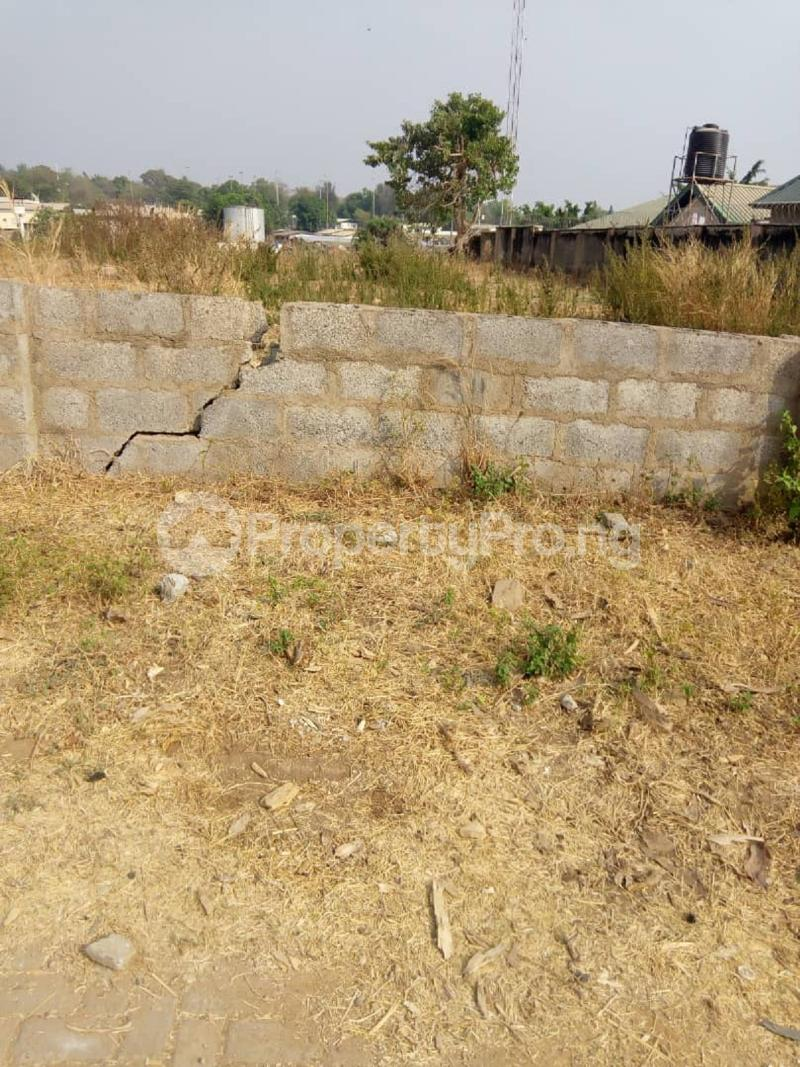 Residential Land for sale Asokoro Asokoro Abuja - 0