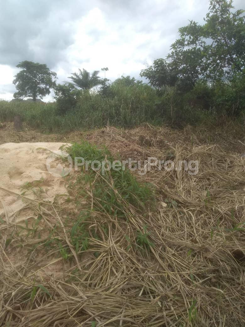 Residential Land Land for sale Idunmwungha Community Along Egba Road Uhunmwonde Edo - 0