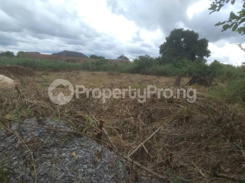 Residential Land Land for sale Idunmwungha Community Along Egba Road Uhunmwonde Edo - 6