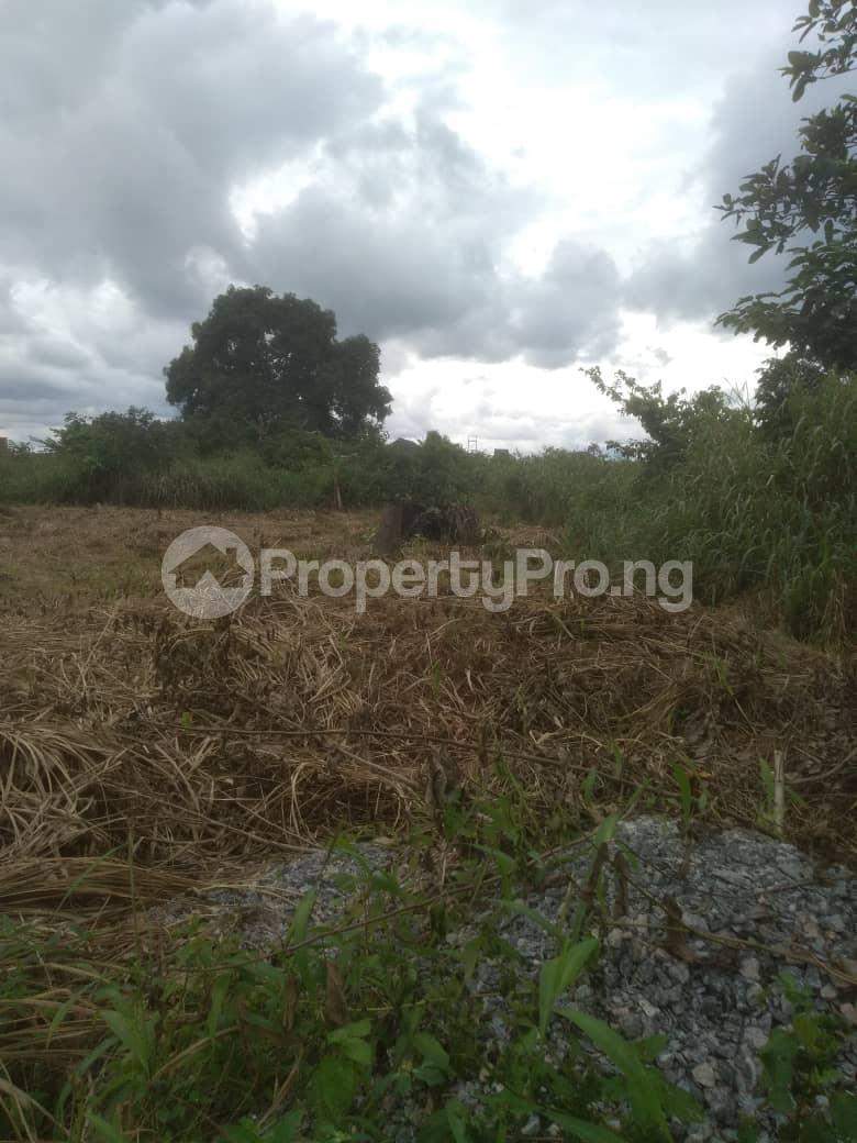 Residential Land Land for sale Idunmwungha Community Along Egba Road Uhunmwonde Edo - 1
