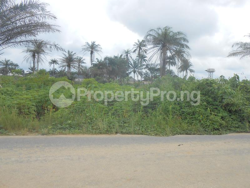 Land for sale - Uyo Akwa Ibom - 1