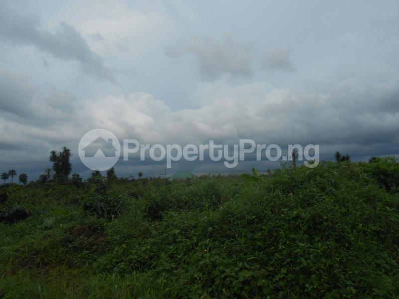 Land for sale - Uyo Akwa Ibom - 2