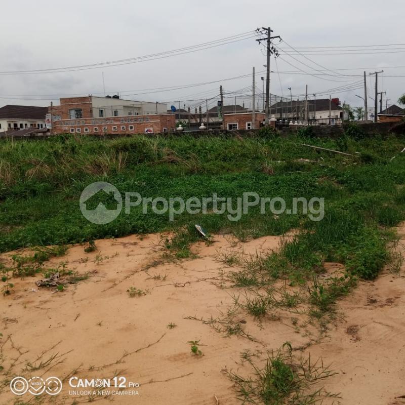 Residential Land Land for sale   Eden garden Estate Ajah Lagos - 4