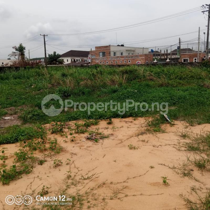 Residential Land Land for sale   Eden garden Estate Ajah Lagos - 0