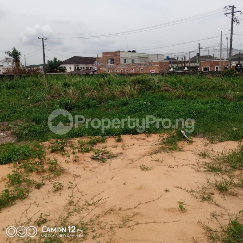 Residential Land Land for sale   Eden garden Estate Ajah Lagos - 1