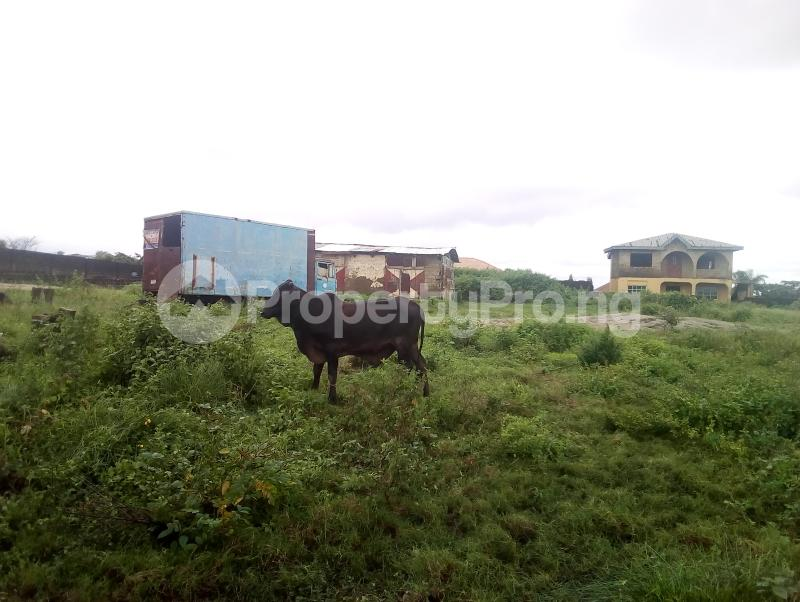 Industrial Land Land for sale Direct Opposite Onimalu Palace Hotel, Iyana Church, Iwo Road. Iwo Rd Ibadan Oyo - 4