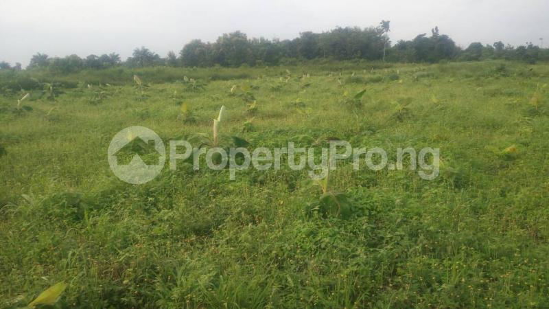 Commercial Land Land for sale Odogbolu Ogun - 2
