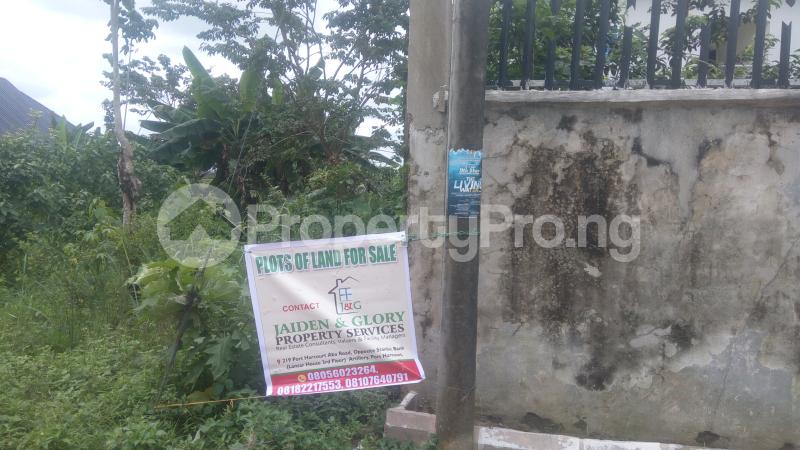 Residential Land Land for sale Centenary Gardens,After Pearl Gardens Eliozu Port Harcourt Rivers - 1