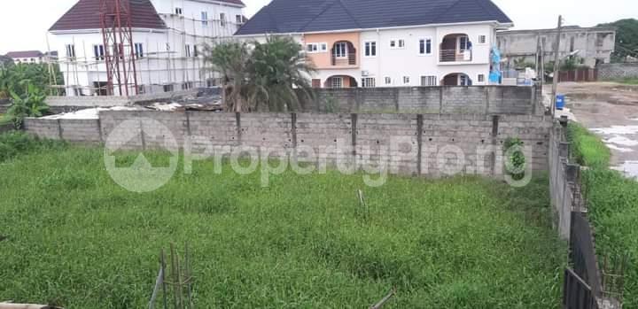Mixed   Use Land for sale Amuwo Odofin Amuwo Odofin Lagos - 3