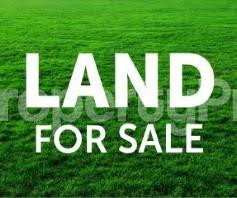 Residential Land Land for sale Bakare Estate Agungi Lekki Lagos - 0