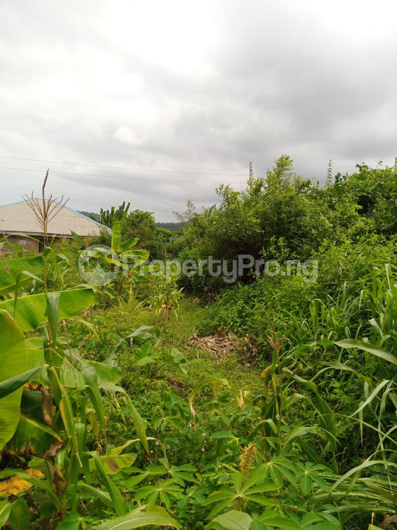 Residential Land for sale Ilese Awo, Idi Ori Ewekoro Ogun - 1