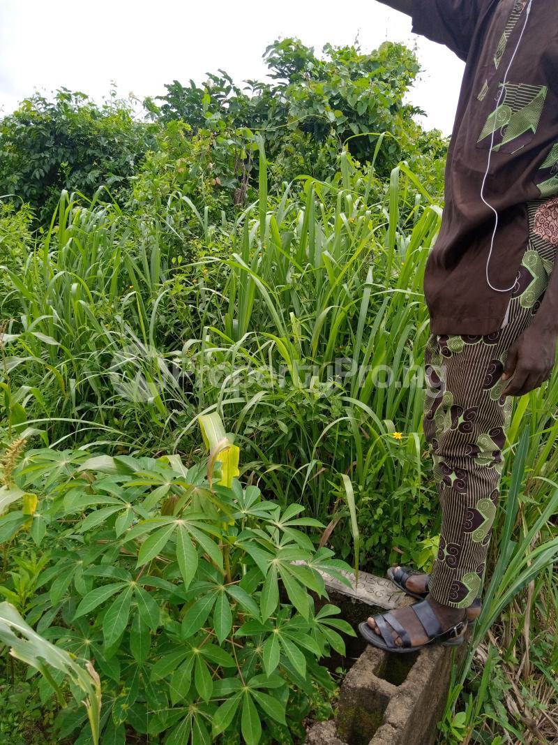 Residential Land for sale Ilese Awo, Idi Ori Ewekoro Ogun - 2