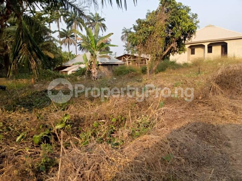 Mixed   Use Land for sale Wisdom Estate Olorunda Lagelu Oyo - 1