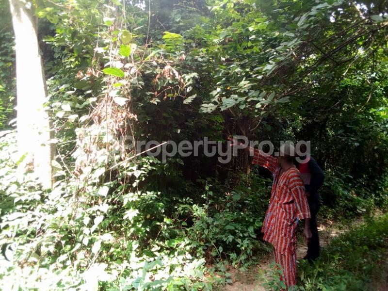 Residential Land Land for sale Olomi Ibadan Oyo - 0