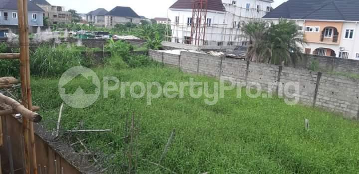 Mixed   Use Land for sale Amuwo Odofin Amuwo Odofin Lagos - 4