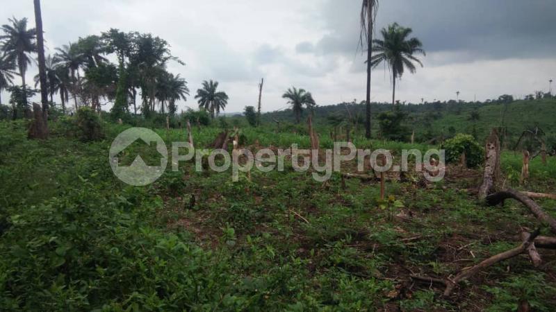 Land for sale Gbekuba, BCJ & Akinlapa Apata Ibadan Oyo - 0