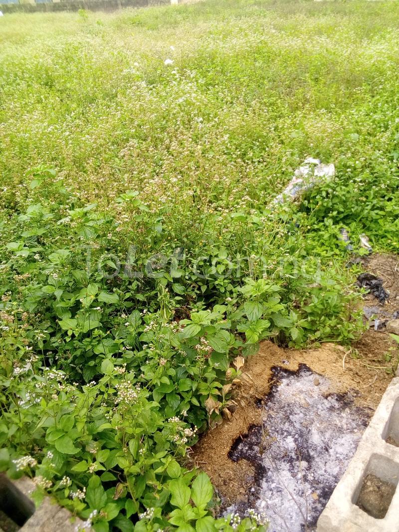Land for sale Ijelu Owo Ondo - 0