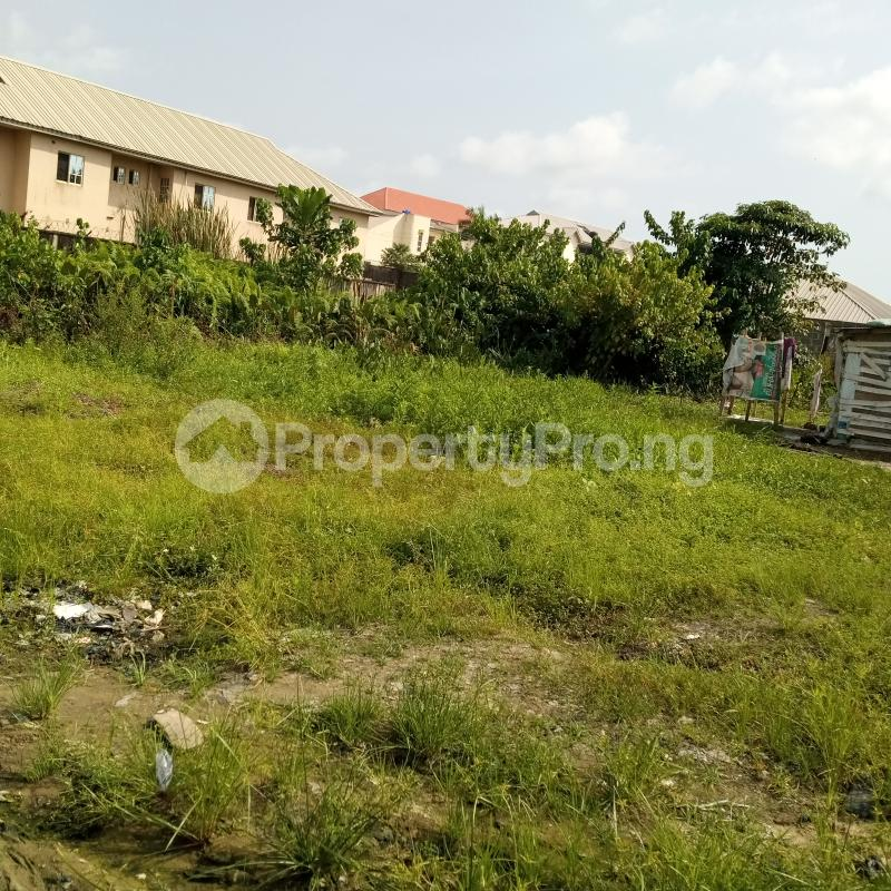 Residential Land Land for sale Opposite Nero Bus Stop Sangotedo Ajah Lagos - 2