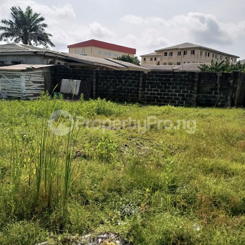 Residential Land Land for sale Opposite Nero Bus Stop Sangotedo Ajah Lagos - 0