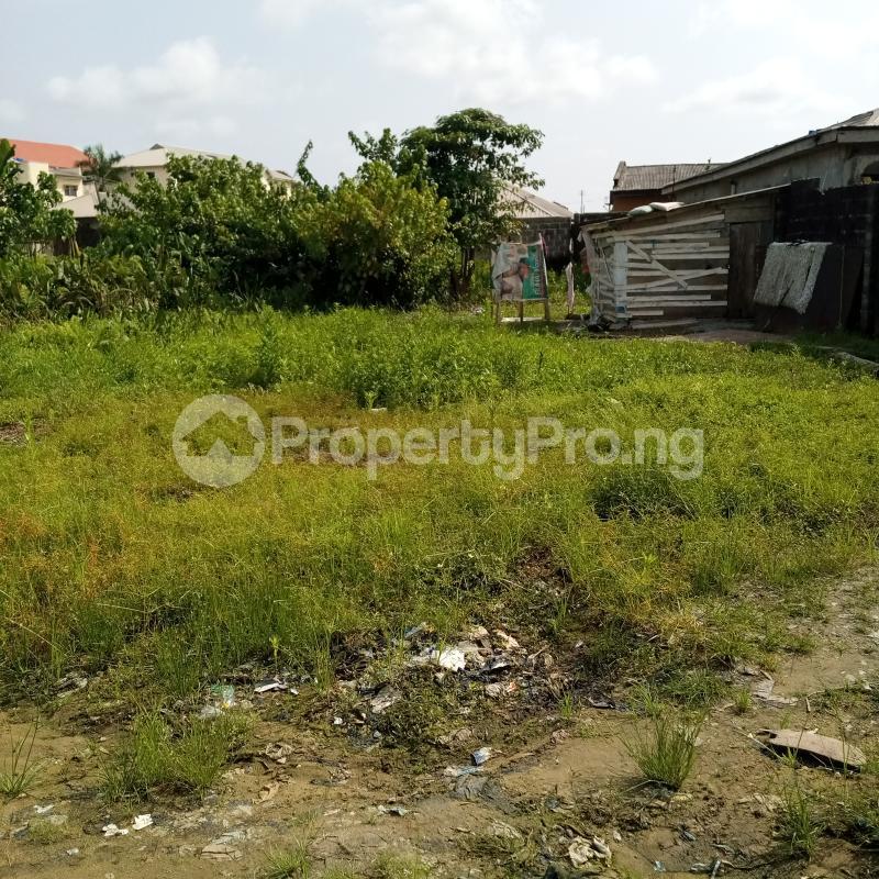Residential Land Land for sale Opposite Nero Bus Stop Sangotedo Ajah Lagos - 1