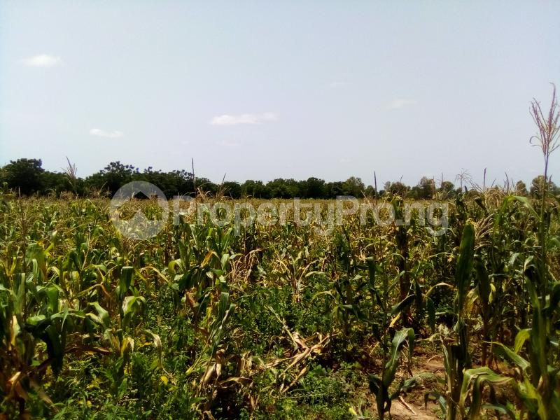Commercial Land Land for sale Along Kakua Abuja Kaduna Expressway Kaduna South Kaduna - 1