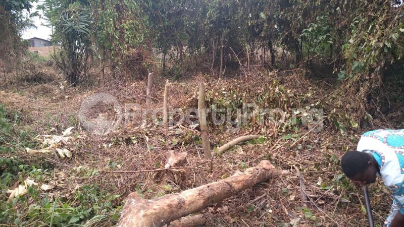 1 bedroom Residential Land for sale Aikulola, Oluwo Ibadan Egbeda Oyo - 1