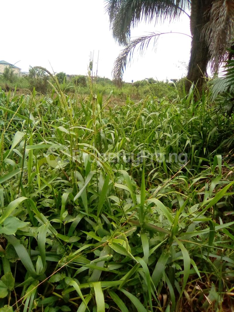 Residential Land Land for sale Egbeleukwu, Umuona Chokota along Ebele 4 Etche Rivers - 1