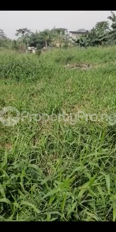 6 bedroom Land for sale Oke Ira Off Modupe Johnson Oke-Ira Ogba Lagos - 1