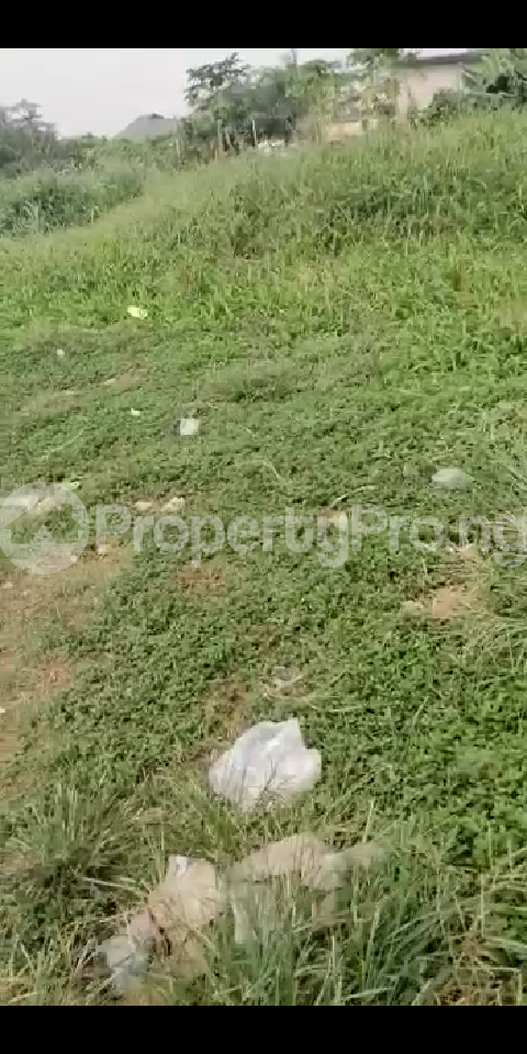 6 bedroom Land for sale Oke Ira Off Modupe Johnson Oke-Ira Ogba Lagos - 2