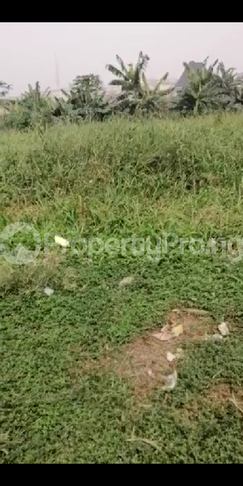 6 bedroom Land for sale Oke Ira Off Modupe Johnson Oke-Ira Ogba Lagos - 4