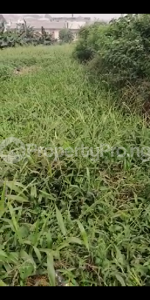 6 bedroom Land for sale Oke Ira Off Modupe Johnson Oke-Ira Ogba Lagos - 0