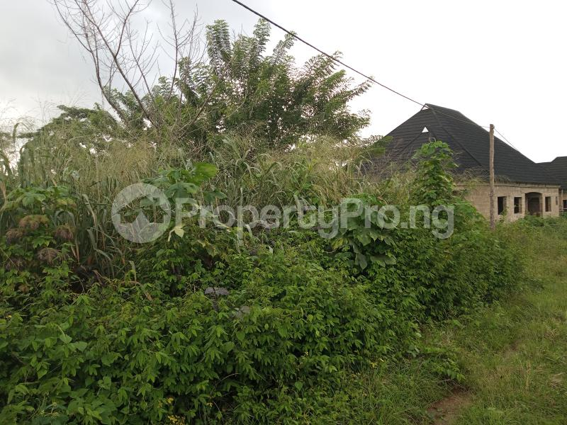 Residential Land for sale Alagbaka Extension, Behind Sib Akure Ondo - 8