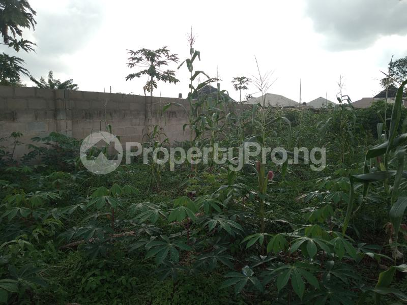 Residential Land for sale Alagbaka Extension, Behind Sib Akure Ondo - 4