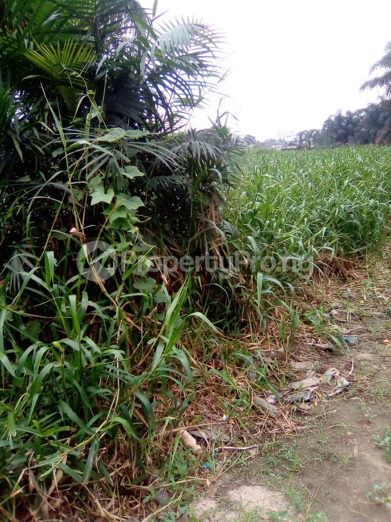 Residential Land Land for sale Egbeleukwu, Umuona Chokota along Ebele 4 Etche Rivers - 2