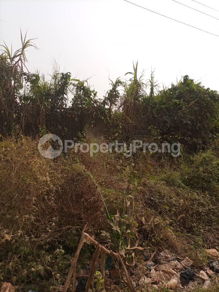 Land for sale Ifeoluwa Area & Other Places Moniya Ibadan Oyo - 0