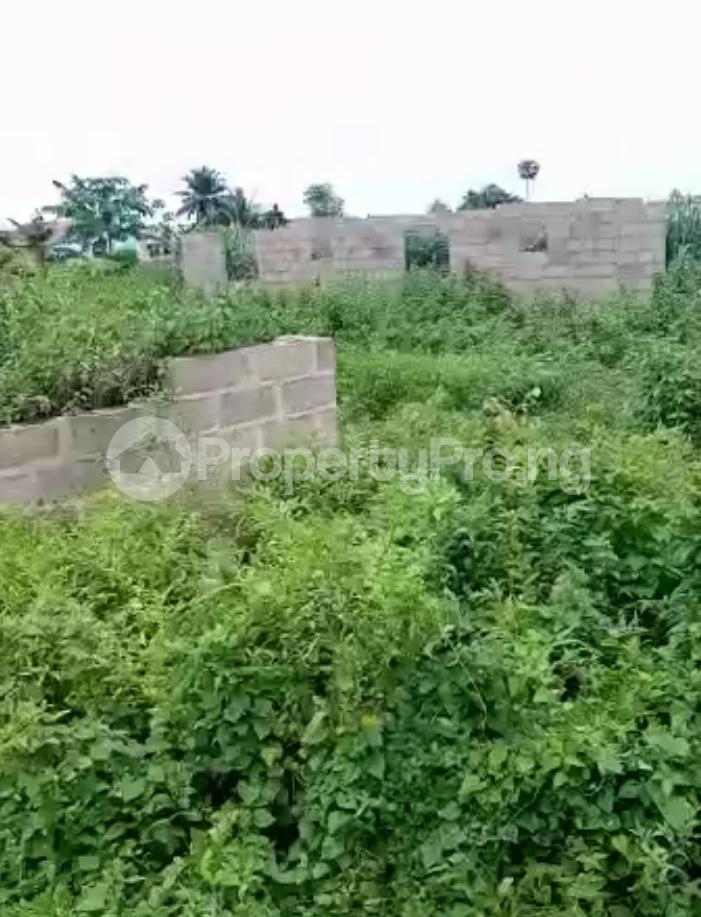 Residential Land for sale Ijebu Ife Ijebu Ode Ijebu Ogun - 4