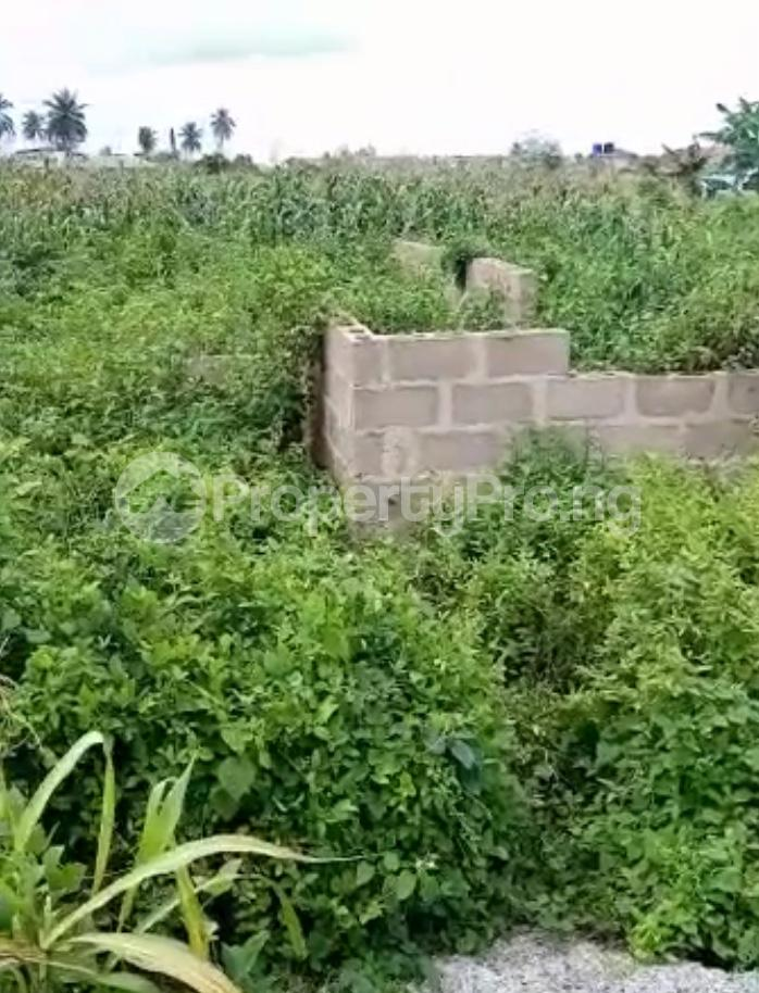 Residential Land for sale Ijebu Ife Ijebu Ode Ijebu Ogun - 2