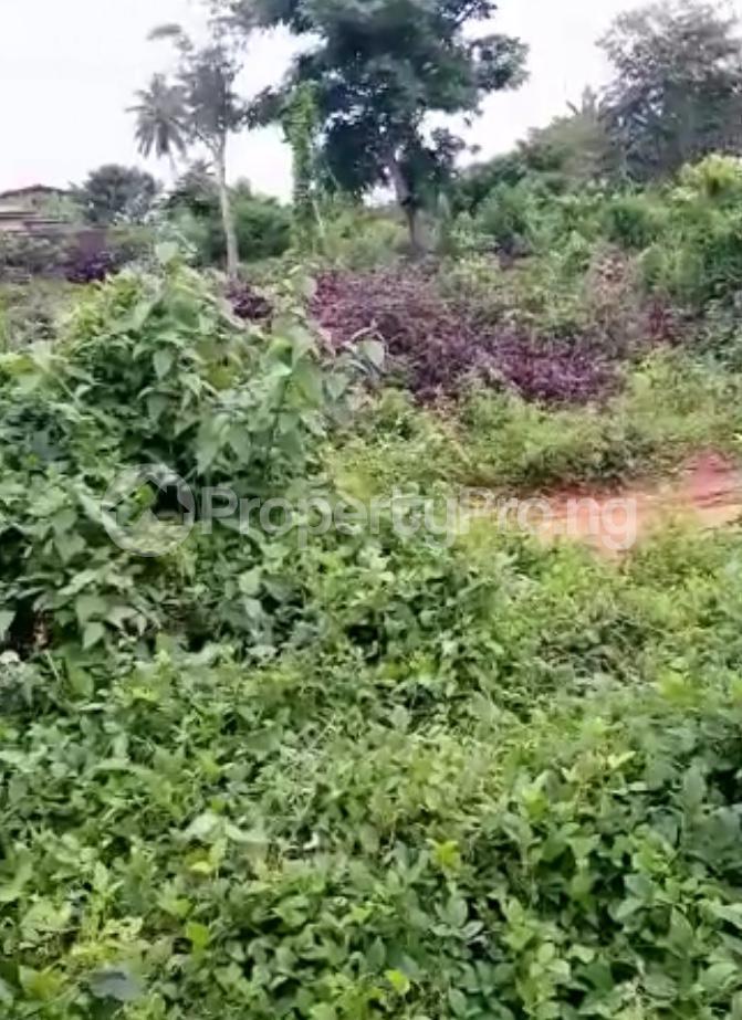 Residential Land for sale Ijebu Ife Ijebu Ode Ijebu Ogun - 7