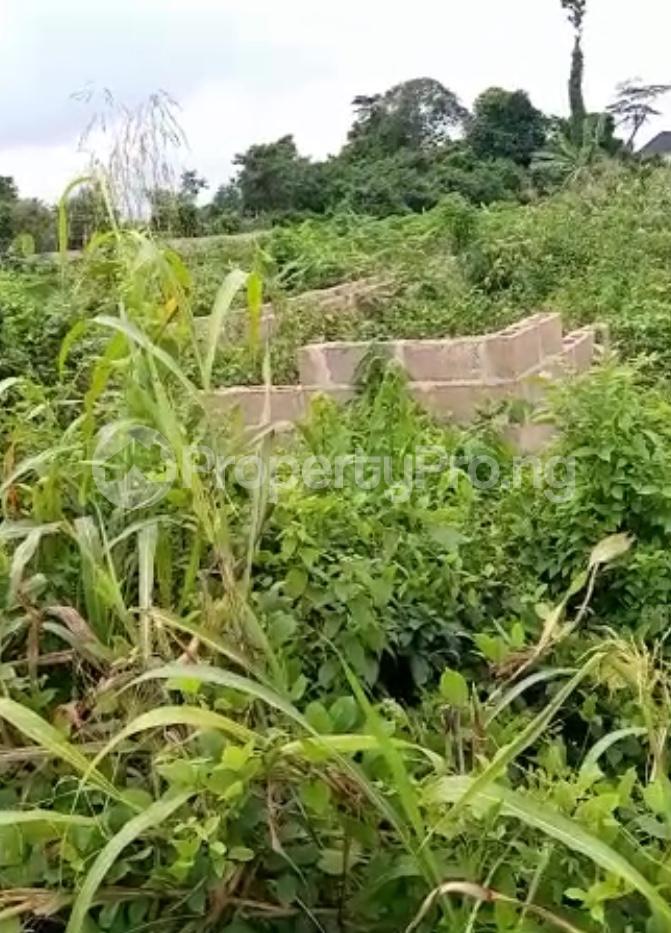 Residential Land for sale Ijebu Ife Ijebu Ode Ijebu Ogun - 5
