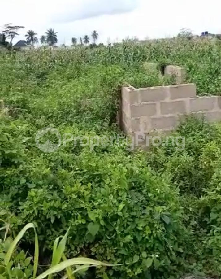Residential Land for sale Ijebu Ife Ijebu Ode Ijebu Ogun - 3