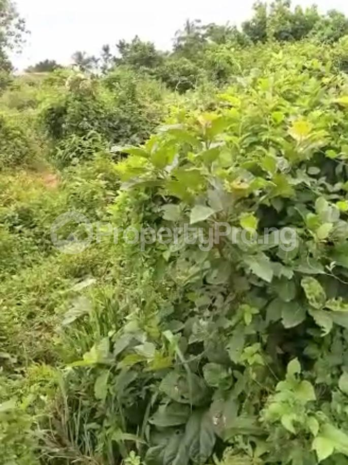 Residential Land for sale Ijebu Ife Ijebu Ode Ijebu Ogun - 6